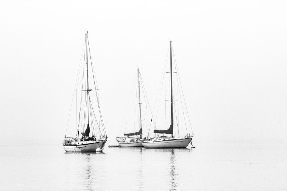 Phact Homepage Ships